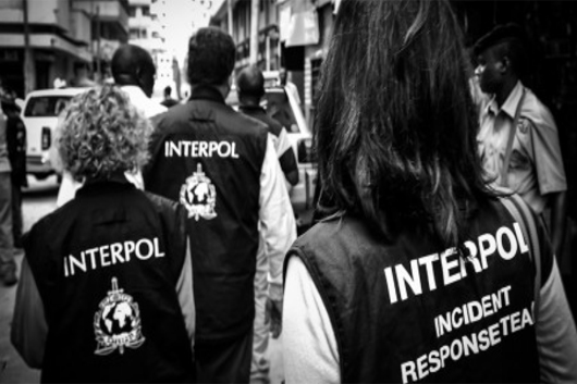 Desmantela la Interpol red internacional de pedófilos